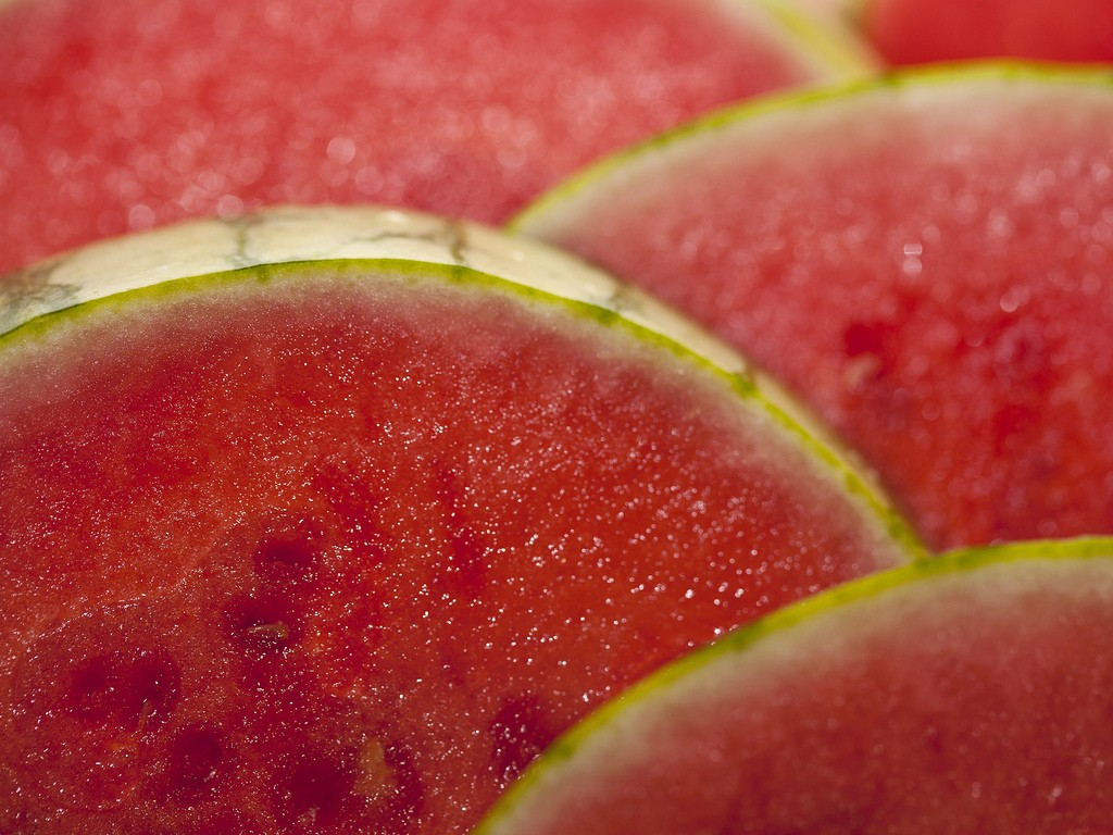 7354457298_03498c47fe_b watermelon slices