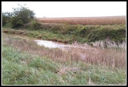 Martz Farm - Sugar Creek